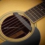 Rare_Earth_Mic_Blend_in_guitar.800